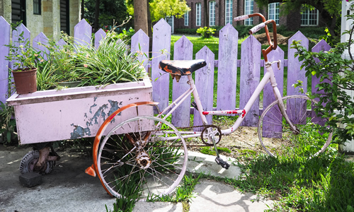 Transform Empty Backyard : Cheap and easy garden hacks to transform your green space